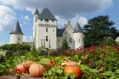 1_Le-chateau-du-Rivau-scaled